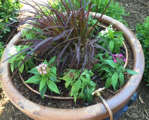 flower pot irrigation